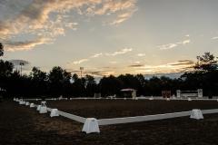 09.08.2014: Dressurturnier_Samstag