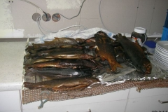 19.04.2008: Fischessen