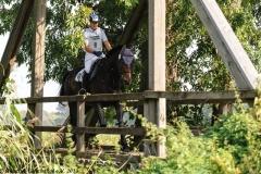 28./29.09.2013: Mertingen